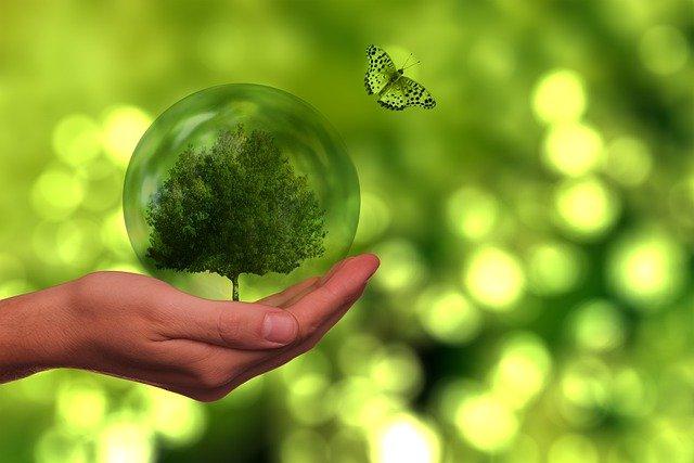 sostenibilidad viajes de negocio